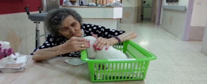 טיפול בעזרת בעלי חיים בבתי אבות במרכז הארץ